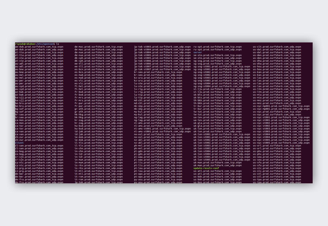 Surfshark terminal screenshot