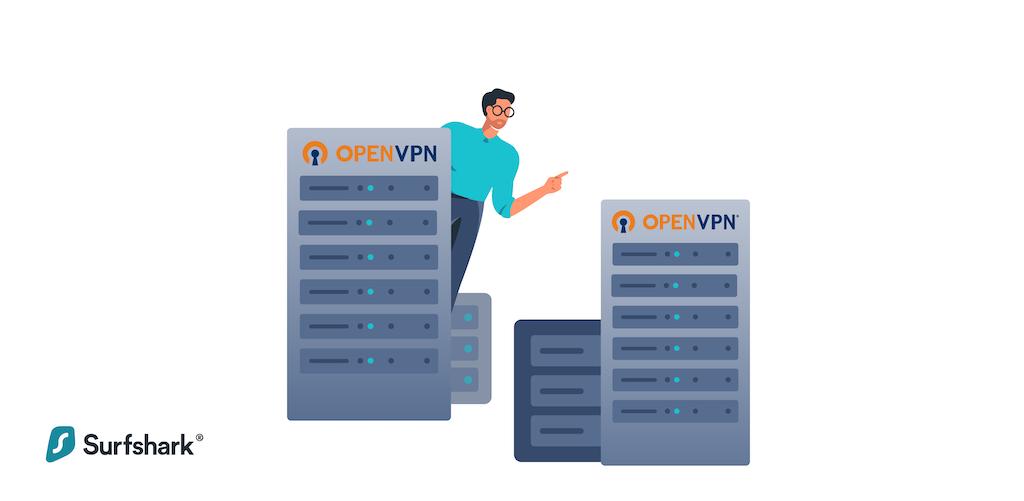 OpenVPN as VPN software